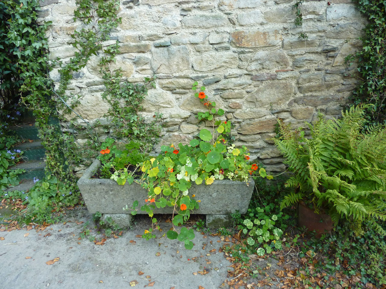 Cullintra House, Farmhouse Accommodation, Bed & Breakfast, Co Kilkenny, Ireland