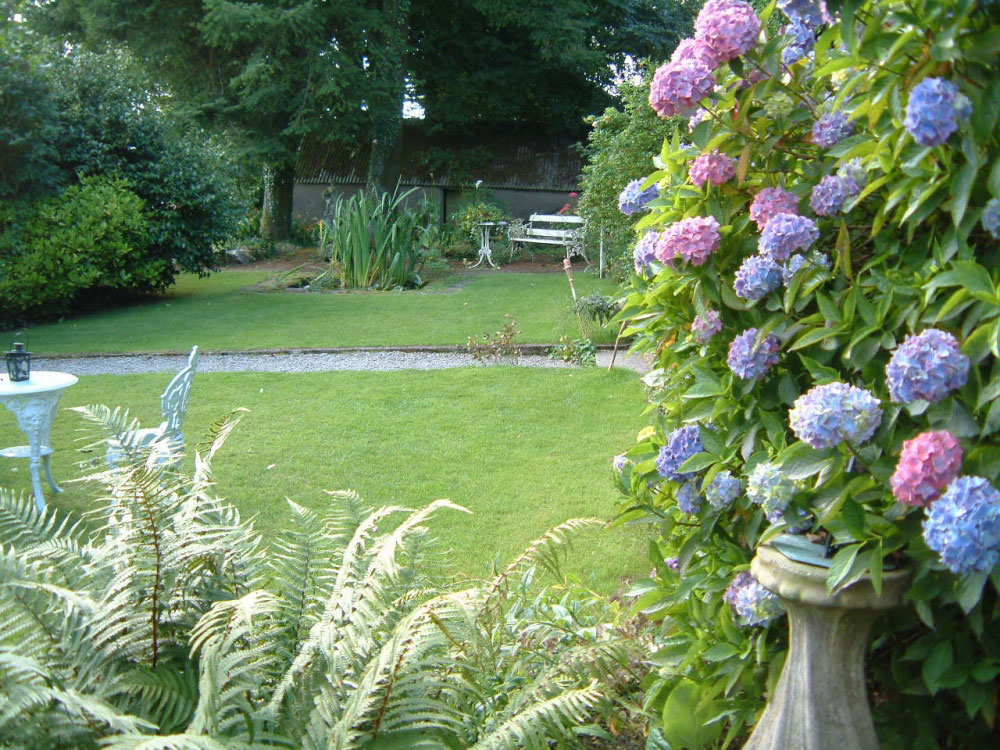 The gardens at Cullintra House have many beautiful flowers and shrubs, the perfect backdrop
