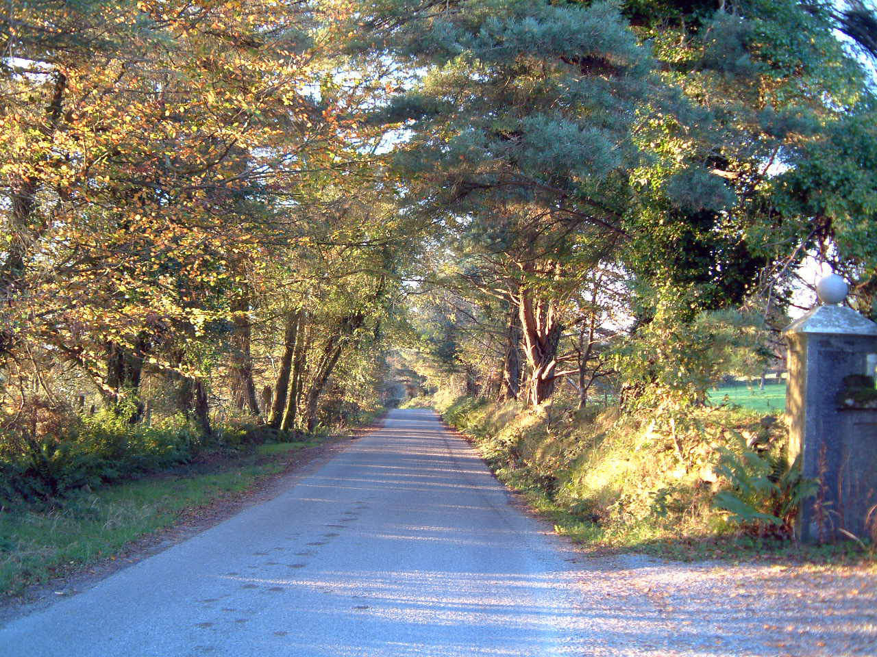 Quiet country lanes, perfect for leisurely strolls at Cullintra House, Kilkenny, Ireland